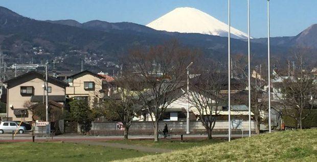cropped-cropped-fuji1.jpg